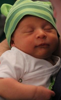 Delian, geb. 26.5.2012